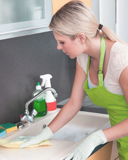 Domestic Cleaning Leyton
